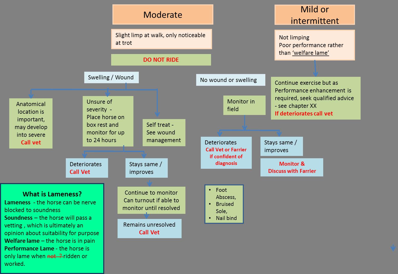 mod-mild-lameness